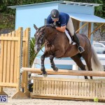 RES Horse Show Bermuda, January 21 2017-75