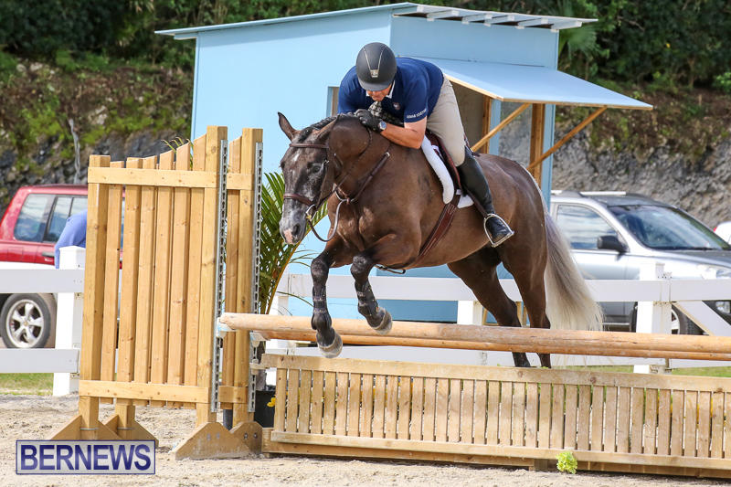 RES-Horse-Show-Bermuda-January-21-2017-75