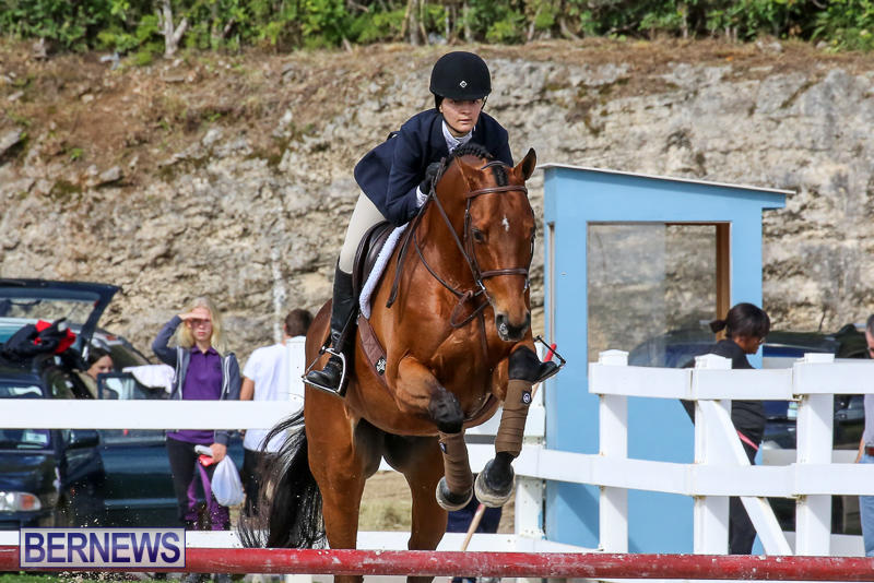 RES-Horse-Show-Bermuda-January-21-2017-76