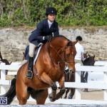 RES Horse Show Bermuda, January 21 2017-77