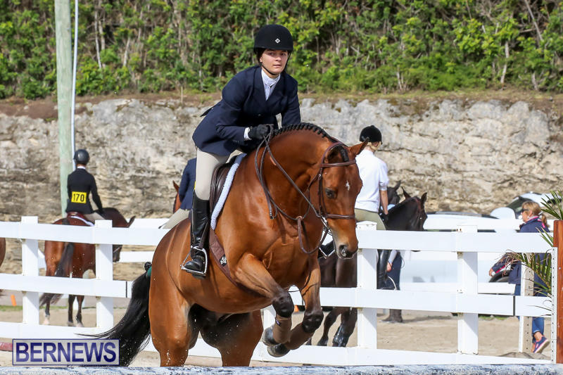 RES-Horse-Show-Bermuda-January-21-2017-77