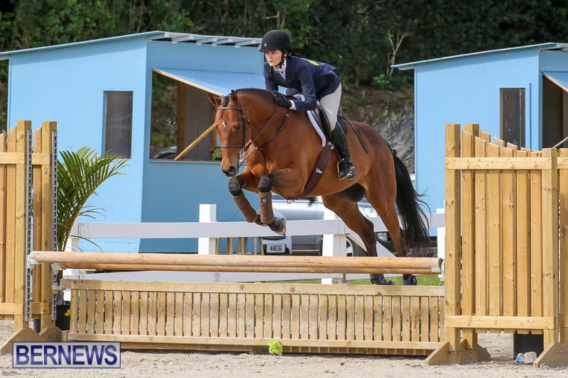 RES-Horse-Show-Bermuda-January-21-2017-79
