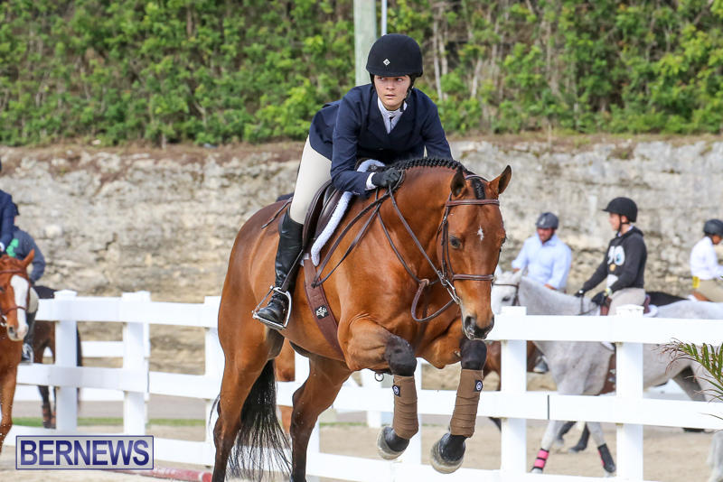 RES-Horse-Show-Bermuda-January-21-2017-81