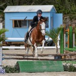 RES Horse Show Bermuda, January 21 2017-82