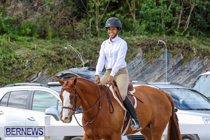 RES-Horse-Show-Bermuda-January-21-2017-85