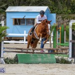 RES Horse Show Bermuda, January 21 2017-86