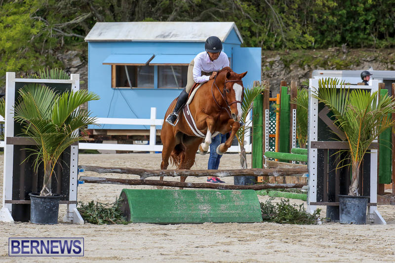 RES-Horse-Show-Bermuda-January-21-2017-86