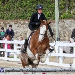 RES Horse Show Bermuda, January 21 2017-87