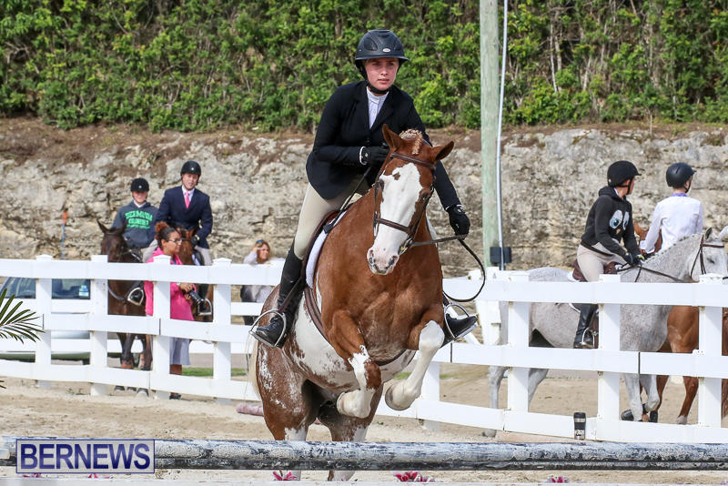 RES-Horse-Show-Bermuda-January-21-2017-87