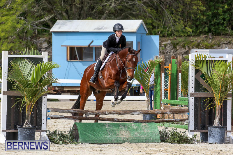 RES-Horse-Show-Bermuda-January-21-2017-89