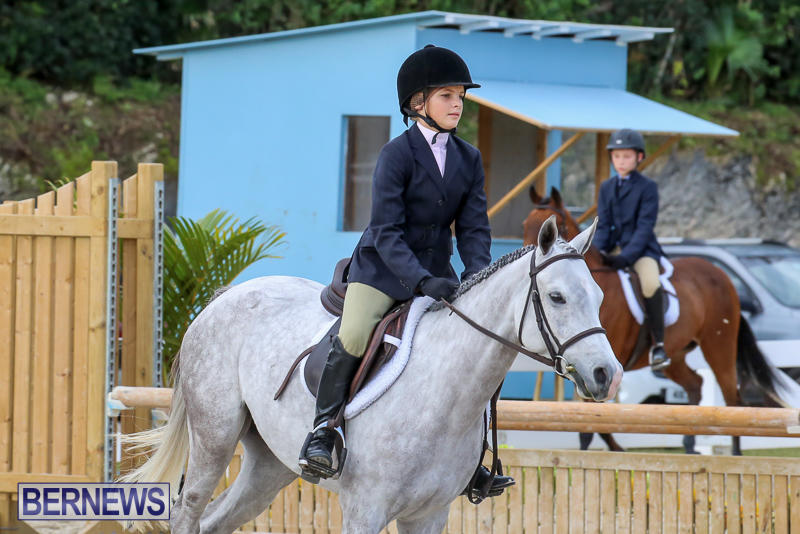 RES-Horse-Show-Bermuda-January-21-2017-9