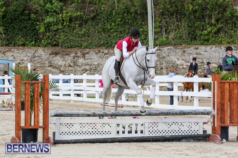 RES-Horse-Show-Bermuda-January-21-2017-90