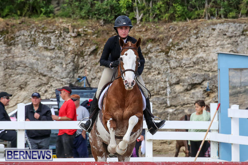 RES-Horse-Show-Bermuda-January-21-2017-91