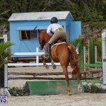 RES Horse Show Bermuda, January 21 2017-92