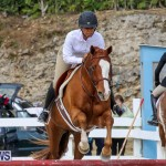 RES Horse Show Bermuda, January 21 2017-94