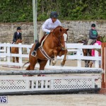 RES Horse Show Bermuda, January 21 2017-95