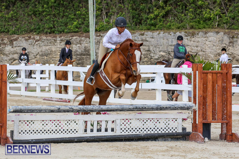 RES-Horse-Show-Bermuda-January-21-2017-95