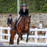 RES Horse Show Bermuda, January 21 2017-96