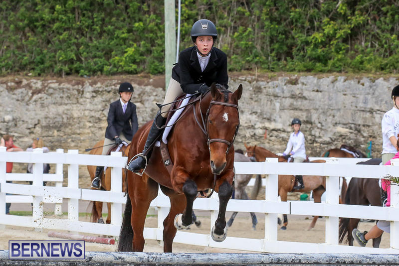 RES-Horse-Show-Bermuda-January-21-2017-96