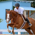 RES Horse Show Bermuda, January 21 2017-97