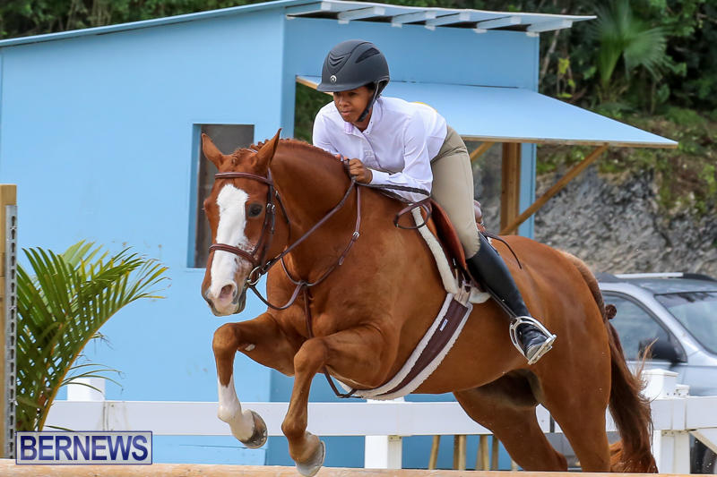 RES-Horse-Show-Bermuda-January-21-2017-97