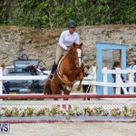 RES Horse Show Bermuda, January 21 2017-98