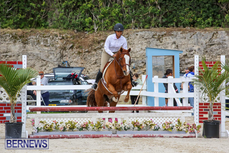 RES-Horse-Show-Bermuda-January-21-2017-98
