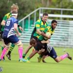 Rugby Bermuda Jan 21 2017 (1)