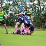 Rugby Bermuda Jan 21 2017 (17)