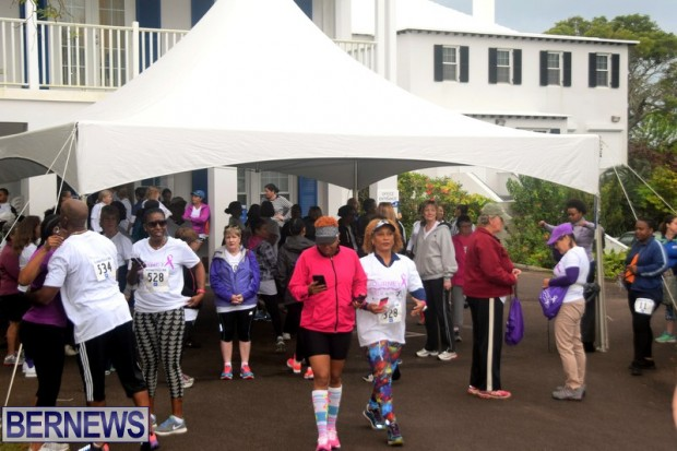 2017 Bermuda PALS cancer walk feb (1)