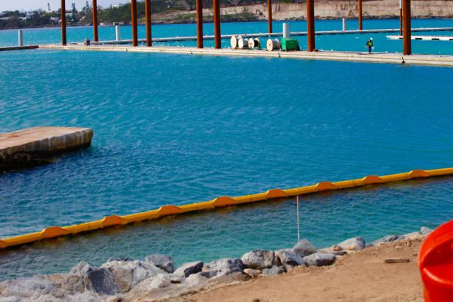 Caroline Bay Marina Bermuda Feb 10 2017 (5)