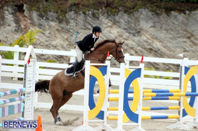 FEI-Jumping-Challenge-Bermuda-Feb-4-2017-15