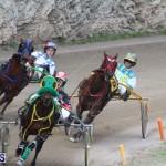 Harness Pony Final Bermuda Feb 18 2017 (11)