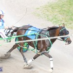 Harness Pony Final Bermuda Feb 18 2017 (13)