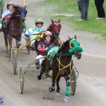 Harness Pony Final Bermuda Feb 18 2017 (16)