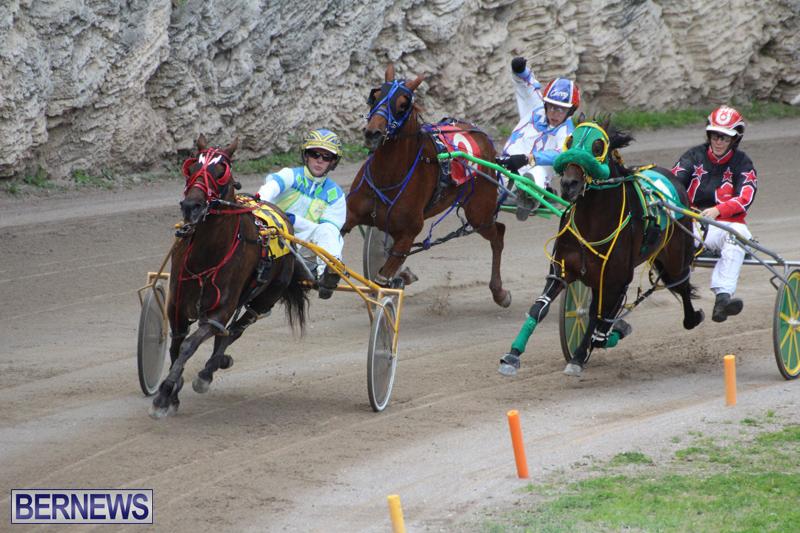 Harness-Pony-Final-Bermuda-Feb-18-2017-18