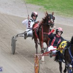 Harness Pony Final Bermuda Feb 18 2017 (8)