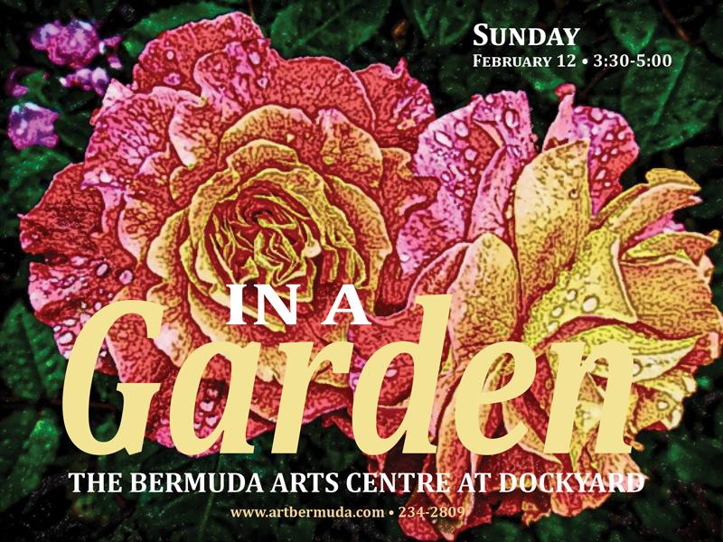 In a garden Bermuda February 2017