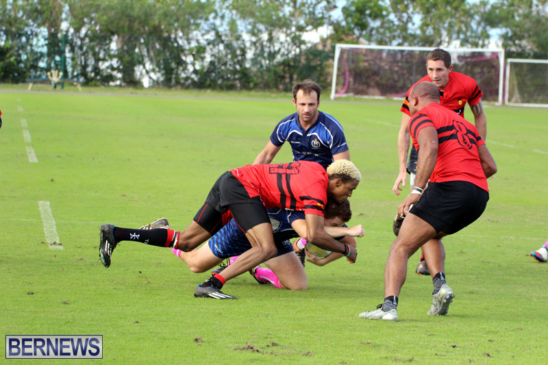 Rugby-Bermuda-January-28-2017-15