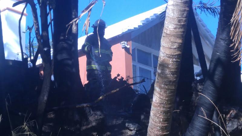 fire Bermuda February 1 2017 (3)