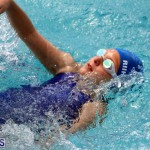 2nd Best of the Best Swimming Meet Bermuda March 4 2017 (19)