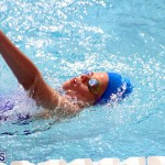 2nd Best of the Best Swimming Meet Bermuda March 4 2017 (4)
