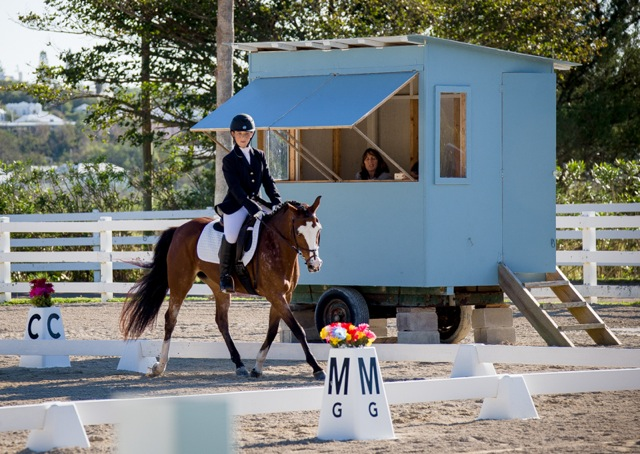 Bermuda Dressage Show March 18 2017 (2)