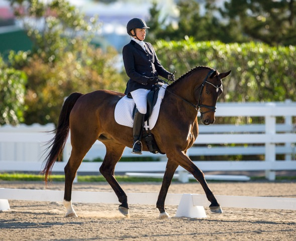 Bermuda Dressage Show March 18 2017 (3)