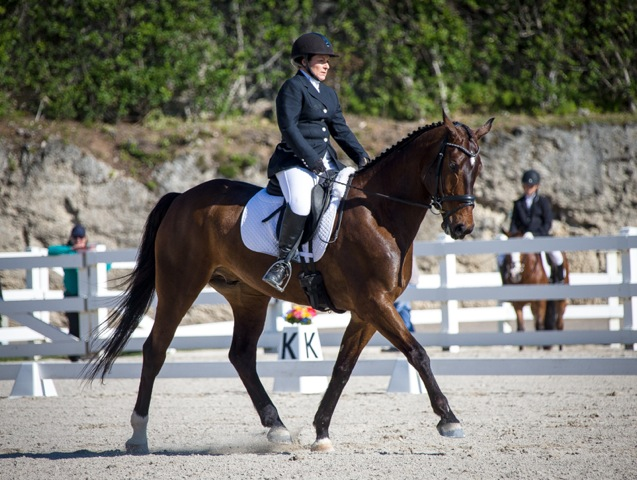 Bermuda Dressage Show March 18 2017 (4)