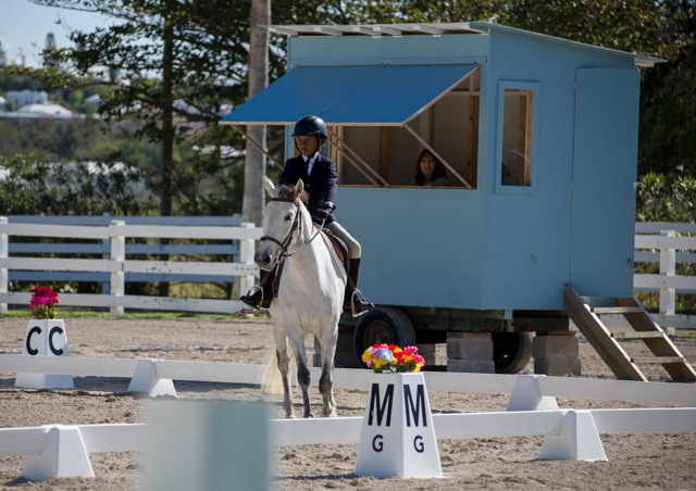 Bermuda Dressage Show March 18 2017 (6)