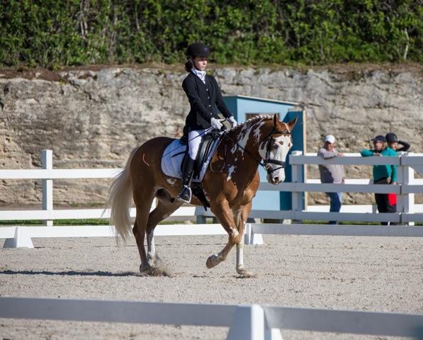 Bermuda Dressage Show March 18 2017 (7)