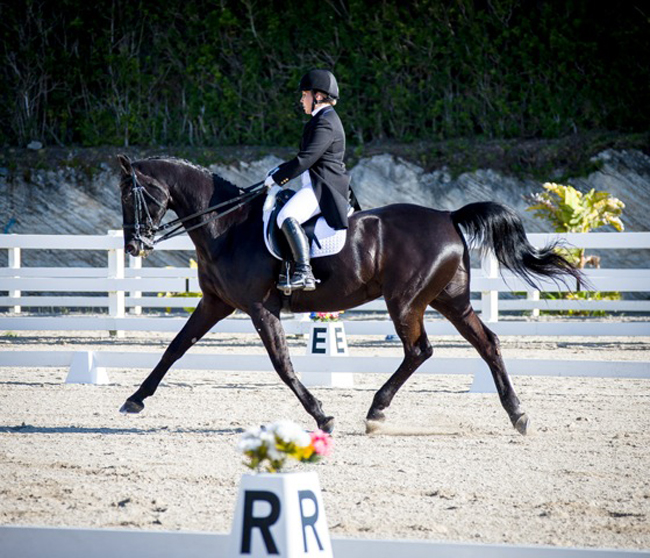 Bermuda Dressage Show March 18 2017 (8)