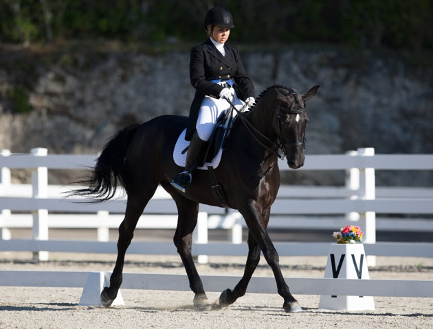 Bermuda Dressage Show March 18 2017 (9)