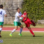 Bermuda Select vs New York Cosmos Football, March 19 2017-116